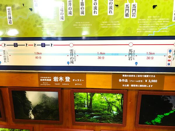 奥入瀬渓流館の案内板